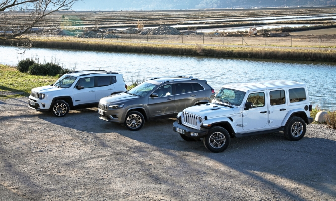 Jeep cherokee, renegade in wrangler